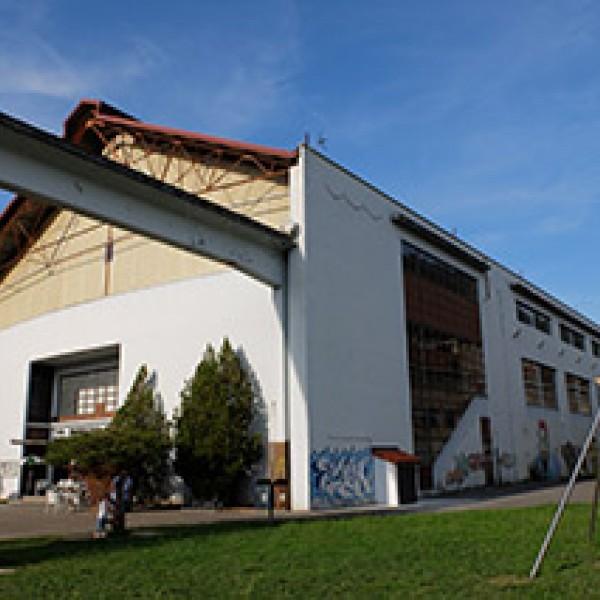 Thumbnail for Municipal Sports Centre of Bergara